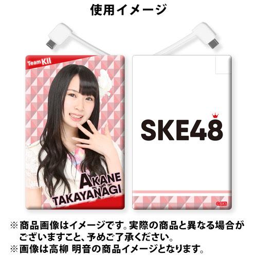 SK-147-1606-20625_p03_500