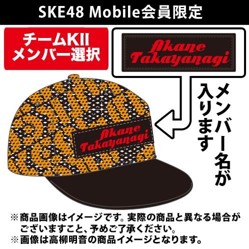 SK-131-1607-22211_p01_500