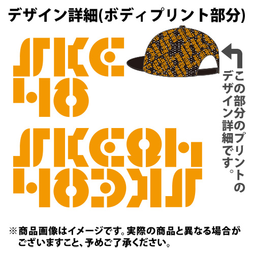 SK-131-1607-22211_p05_500